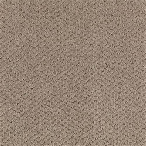 Home Creation Taupe Whisper 745