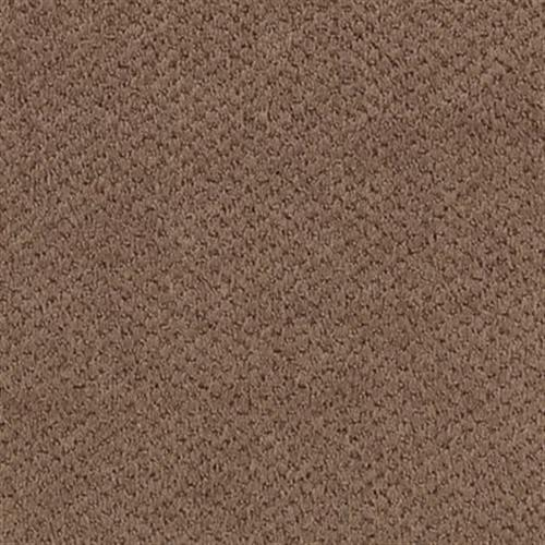 Home Creation Velvet Brown 873