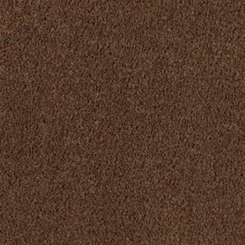 Pleasant Nature Burnished Brown 505
