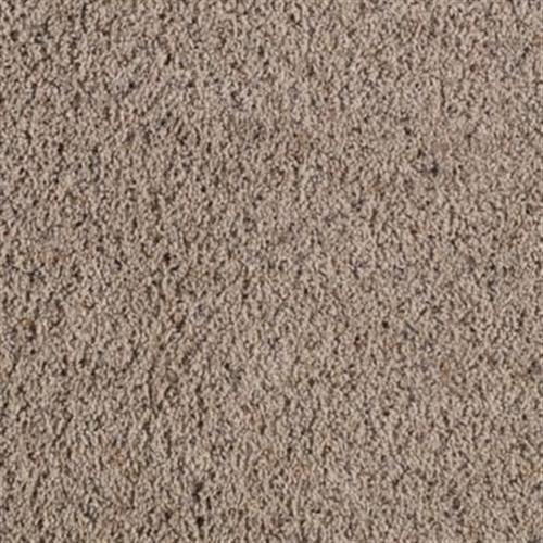 Mesa Heights Dust Bowl 101