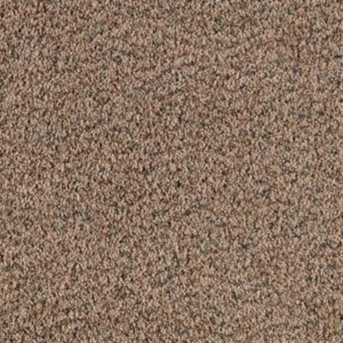 Carmel Meadows Summer Taupe 843