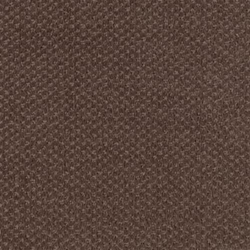 Softique Redwood 884