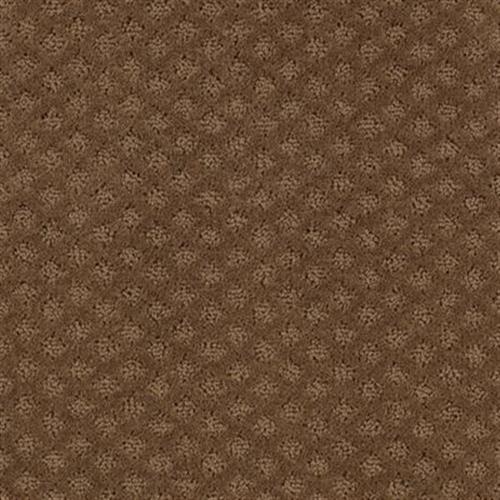 Mohawk Industries Design Inspiration Cattail Carpet Pompano Beach