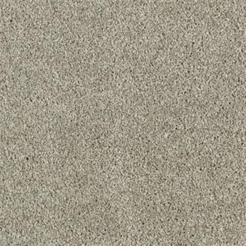 Carpet in kennewick wa from luke 39 s carpet design center for Flooring kennewick