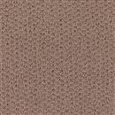 Carpet Adonis Warm Taupe 1Z92_507 thumbnail #1