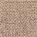 Carpet Adonis Parchment 1Z92_510 thumbnail #1