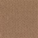 Carpet Adonis Canyon Glow 1Z92_505 thumbnail #1