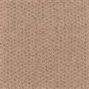Carpet Adonis Stucco 1Z92_515 thumbnail #1