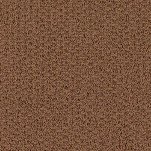 Carpet Adonis Autumn Brown 1Z92_501 main image