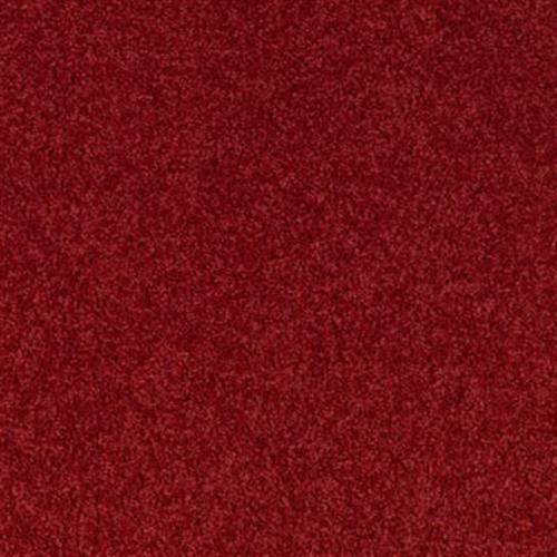 Vivid Contrast Red Velvet 501
