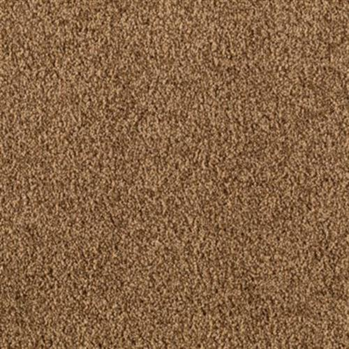 Sheer Brilliance Polished Copper 517