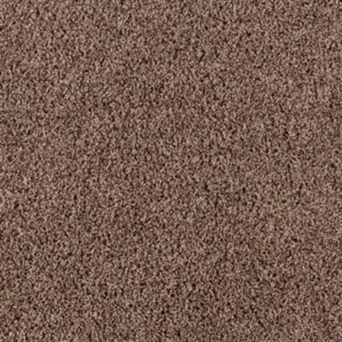 Achiever Taupe Treasure 858
