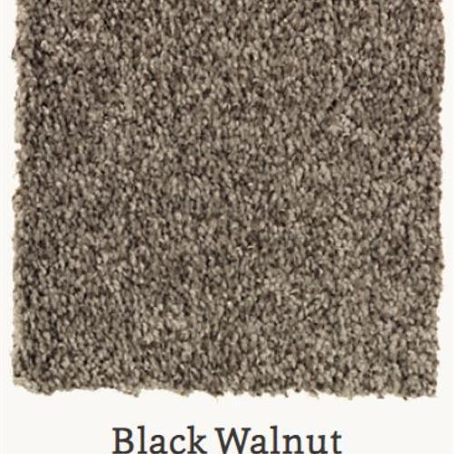Tonal Chic II Black Walnut