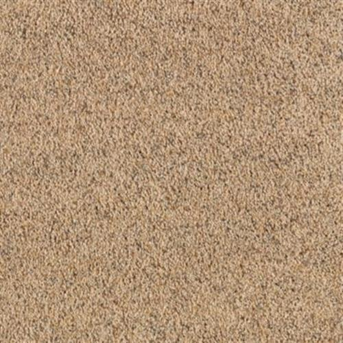 Mohawk Industries Healing Touch Carpet Flooring