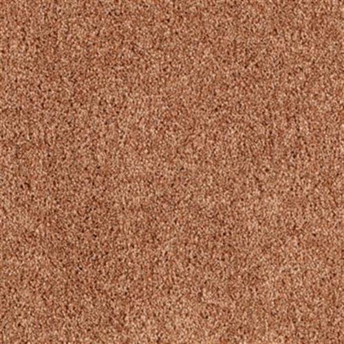 Tasteful Tones Brushed Copper 272