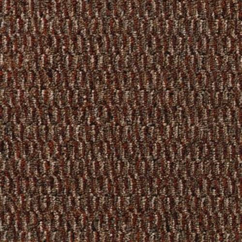 Seamless Vision Redwood 862