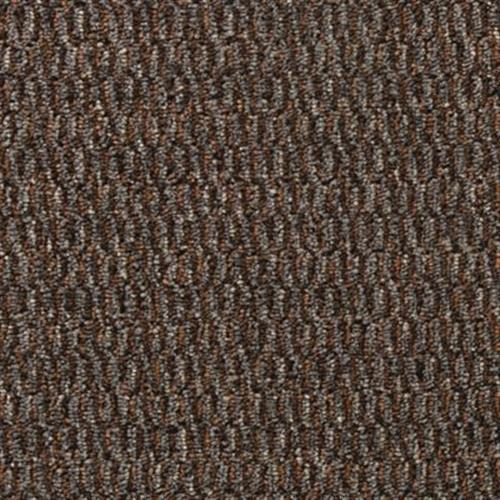 Seamless Vision Umber 968
