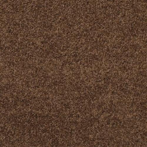 Sacred Star Truffle 506