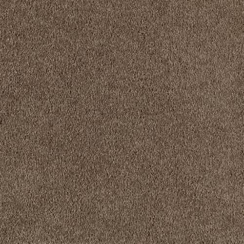 Harmonious Marsh Brown 846