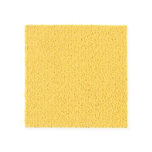 Color Pop 12X36 Lemon Zest 121