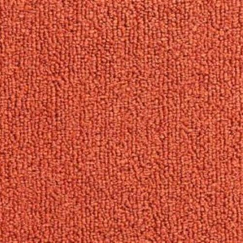 Color Pop 12X36 Sundried Tomato 352