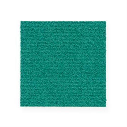 Color Pop 12X36 Calypso 655