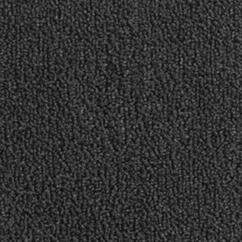Color Pop 12X36 Black Bean 996