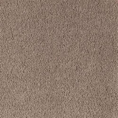 Carpet American Dream Dakota 864 main image