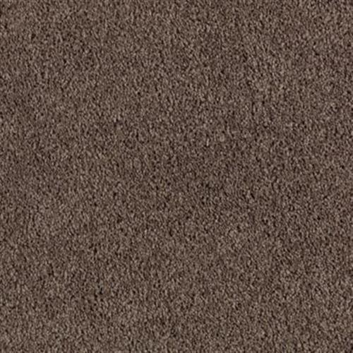 Glamorous Dream Dried Peat 504