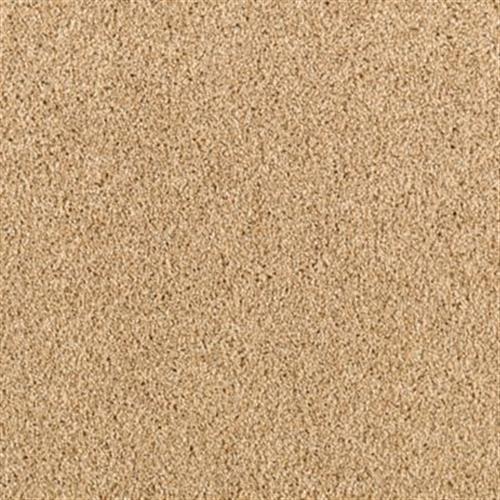 Magnificent Style Velvet Shimmer 509