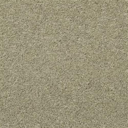 Roaming Spirit Lichen 123