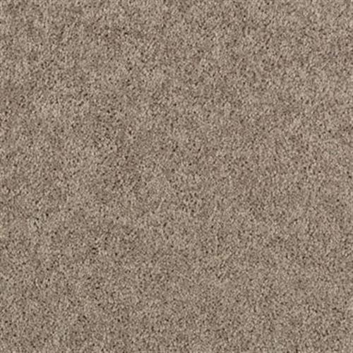 Premier Look Perfect Taupe 869
