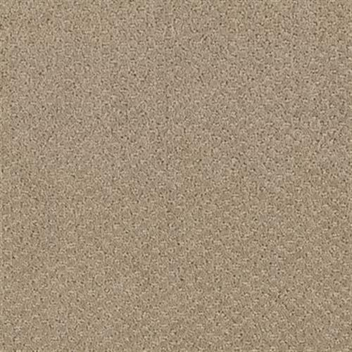 Classic Statement Willow Bark 508