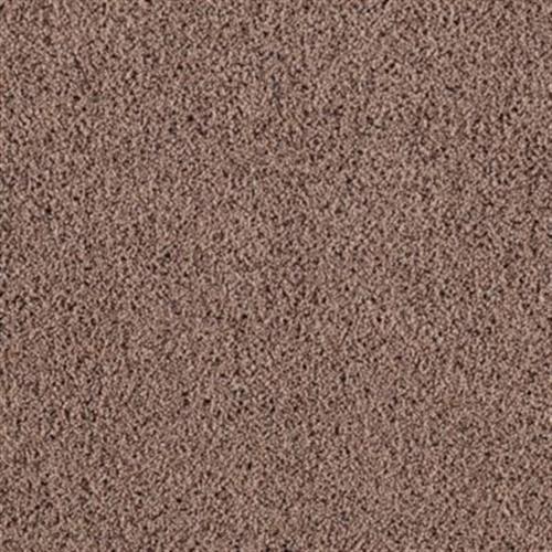 Soft Creation Ii Chocolate Malt 850