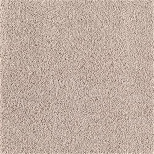 Colorplay Sandpiper 729