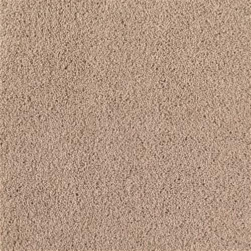 Colorplay Toasted Tan 751