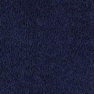 Carpet Spectacular 1P81-585 Regal