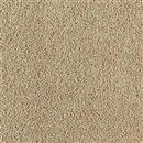 Carpet Spectacular Buckskin 861 thumbnail #1
