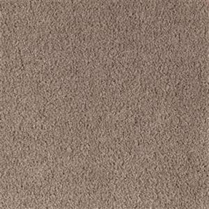 Carpet Spectacular 1P81-864 Dakota