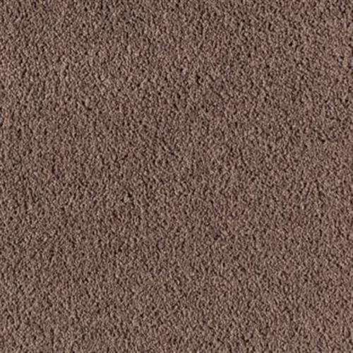 Sensibly Soft I Velvet Brown 879