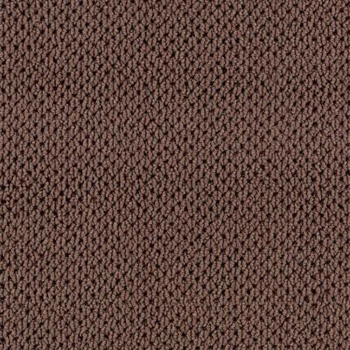 Sweet Symphony Baroque Brown 888