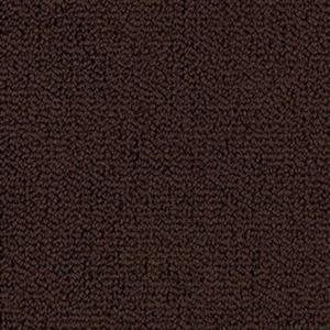Carpet BackyardBBQ 1M93-501 Brownstone
