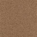 Carpet Backyard BBQ Ancestral Gold  thumbnail #1