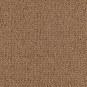 Carpet BackyardBBQ 1M93-506 AncestralGold