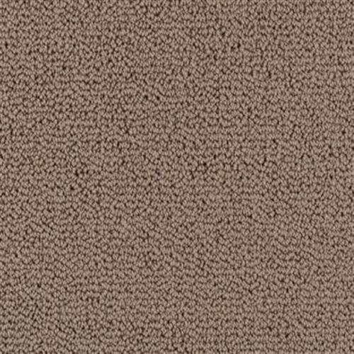Carpet Backyard BBQ Hidden Garden  main image