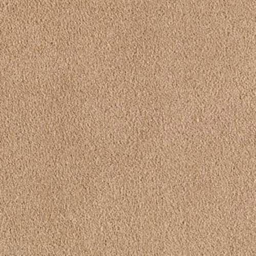 Exclusive Content Ii Beige Canvas 859