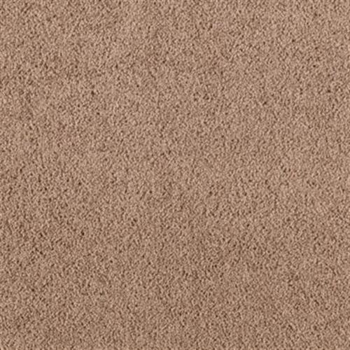 Simply Soft I Colonial Brown 861