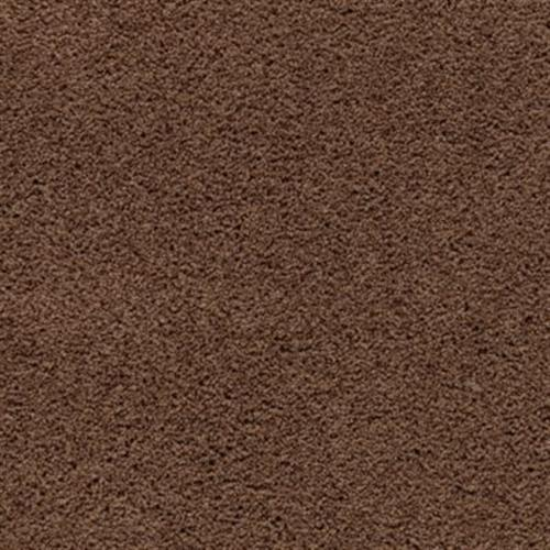 Cozy Comfort Burnished Brown 505