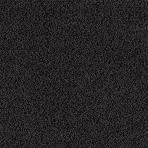 Coastal Beauty Black Lava 9999