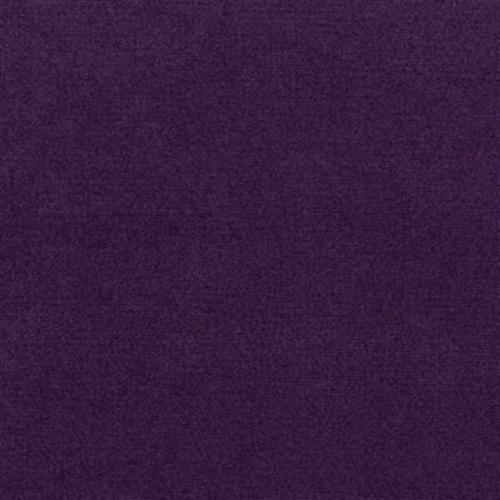 Current Event Ii 30 Wild Violet 106